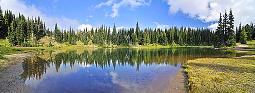 Reflection in Shadow Lake, Trial at the Sunrise Visitor Center, Mount Rainier National Park, Washington, USA, North America