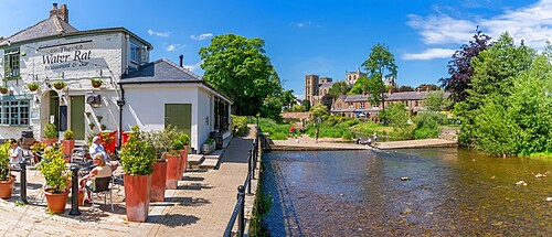 View of Ripon Cathedral and The Water Rat bublic house on the banks of the River Skell, Ripon, North Yorkshire, England, United Kingdom, Europe
