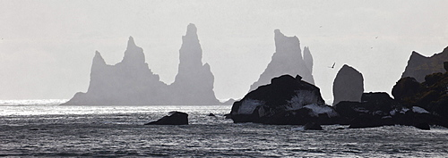 sea stacks at Vik Southern Iceland Iceland Europe Nature Scenery