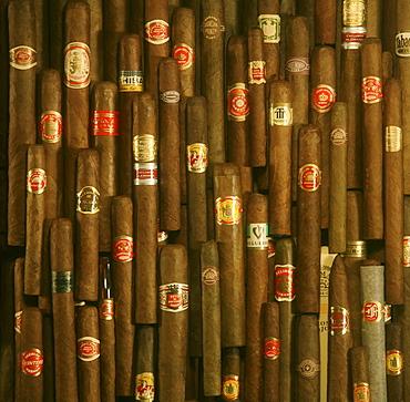 Cuban cigars, Close-up, Cuba, Carribean, North America, Amerika