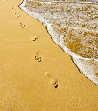 Hawaii, Maui, Makena State Park, Oneloa or Big Beach, Footprints in the sand along the ocean, golden light