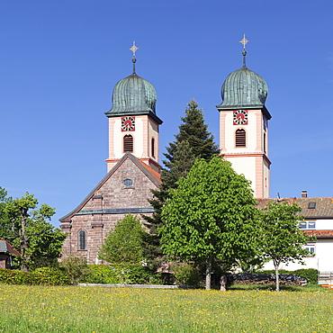 Abbey Chuch, spring, St. Maergen, Glottertal Valley, Black Forest, Baden Wurttemberg, Germany, Europe