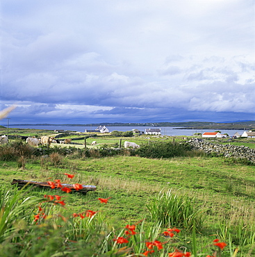 Landscape near Ardara, County Donegal, Ulster, Eire (Republic of Ireland), Europe