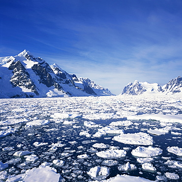 Loose pack ice in the sea, with the Antarctic Peninsula in the background, Antarctica, Polar Regions