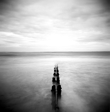 Image taken with a Holga medium format 120 film toy camera of view out to North Sea at dusk with sea washing around old wooden groynes, Alnmouth, Northumberland, England, United Kingdom, Europe