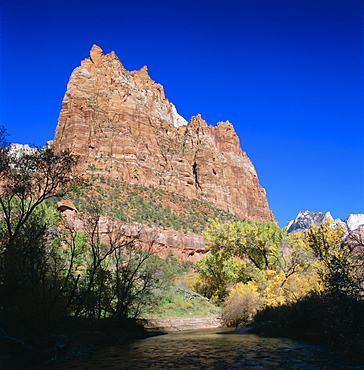 Jagged sandstone cliffs above the Virgin River, Zion National Park, Utah, USA