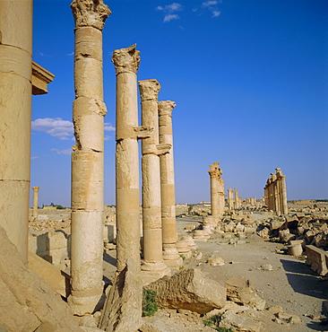Columned main street, 1st century BC to 3rd century AD, Palmyra, Syria