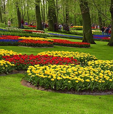 Keukenhof Gardens near Amsterdam, Holland, Europe
