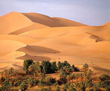 Grand Erg Occidental, Sahara, Algeria.
