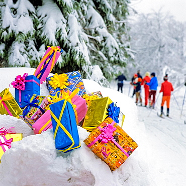 Christmas presents on snow by fir trees and cross-country skiers