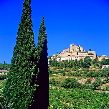 Castle 12th century 'Le Barroux', cypress, Provence, France