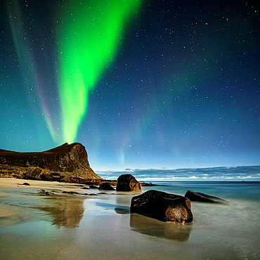 Northern Lights fill sky over Myrland beach, Flakstadoy, Lofoten Islands, Norway.