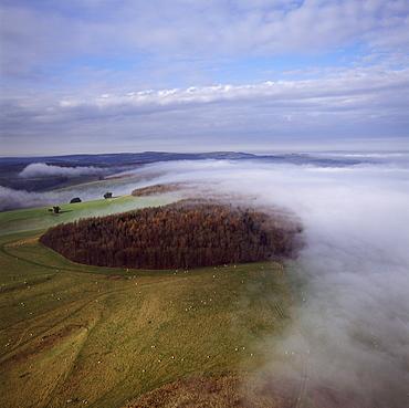 Aerial image of Arundel Park near Arundel Castle, South Downs, West Sussex, England, United Kingdom, Europe