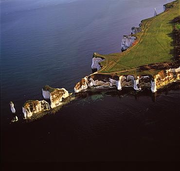 Aerial image of Old Harry Rocks, chalk stacks located directly east of Studland, north of Swanage, Dorset, England, United Kingdom, Europe