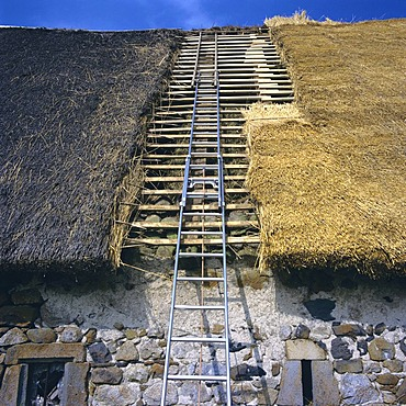 Restoration of a thatched roof