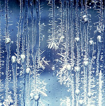 thawing frost pattern on a window pane