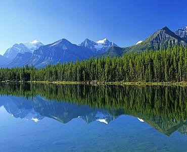 Jasper Tramway, gondola, cablecar, Alberta, Canada