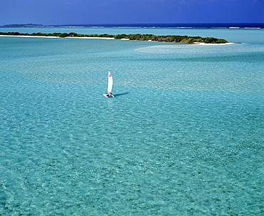 Catamaran in lagoon with island, aerial view, Maldives, Indian Ocean