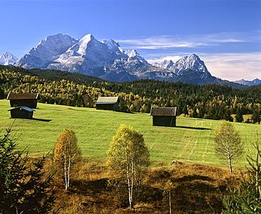 Grassland in autumn, Wetterstein Range, Mittenwald Forest, Upper Bavaria, Bavaria, Germany, Europe