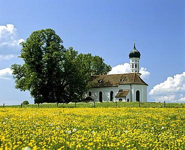 Andreas church near Etting, flower meadow in spring, Weilheim district, Upper Bavaria, Germany