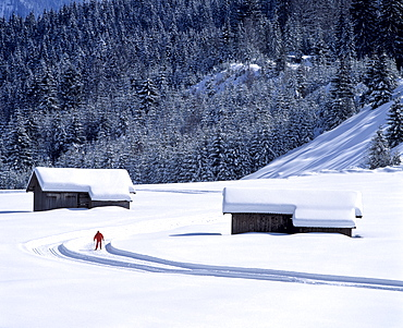 Winter landscape with cross-country ski run between Kaltenbrunn and Klais, Upper Bavaria, Germany