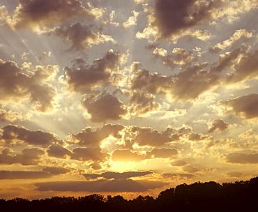 Sunrise, clouds