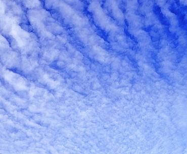 Altocumulus clouds in a blue sky