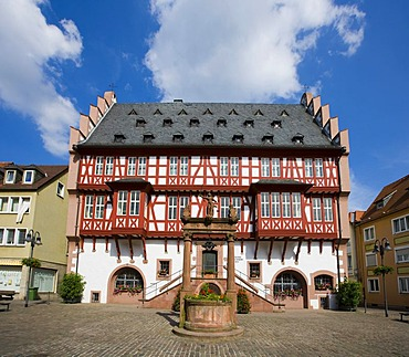 The Deutsches Goldschmiedehaus Museum fuer Kunsthandwerk, German Goldsmith's house Museum for artisan craft, Hanau, Hesse, Germany, Europe