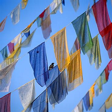 Prayer-flags, Kathmandu, Nepal, Asia