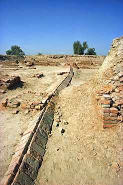 Archaeological site at Harappa dating from 3000 to 1700 BC, Sahiwal district, Pakistan, Asia