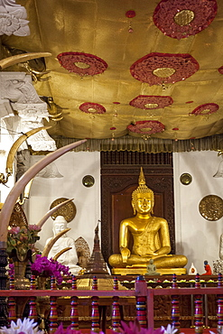 Golden sitting Buddhist statue, Temple of the Sacred Tooth Relic, UNESCO World Heritage Site, Kandy, Sri Lanka, Asia