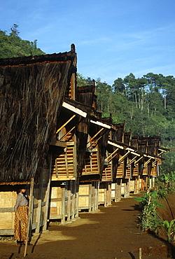 Traditional rice barns (leuit) of Kasepuhan community of West Java, Indonesia