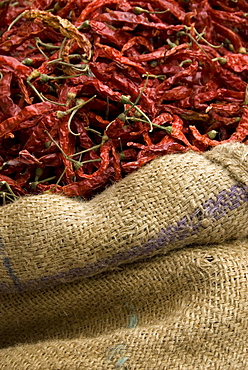 Dried Chillis in hessian sack for sale, Udaipur, Rajasthan, India