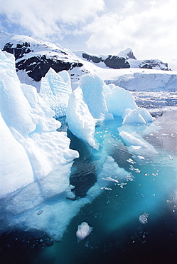 Sculptured iceberg both above and below the water, Paradise Bay, Antarctica, Southern Ocean.
