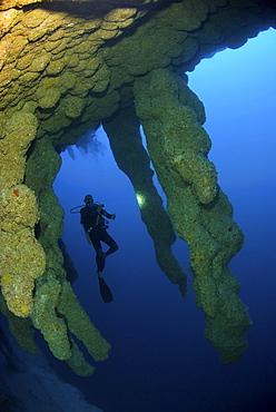 diver in Blue Hole stalactites formations. Belize
