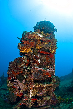Ladder on the wreck of the Lesleen M freighter, sunk as an artificial reef in 1985 in Anse Cochon Bay, St. Lucia, West Indies, Caribbean, Central America