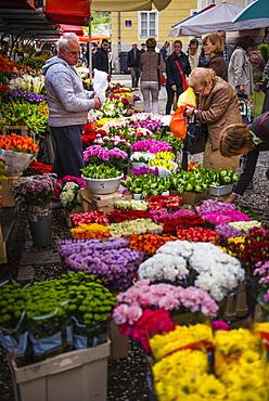 Flower stall owner in Ljubljana Central Market on a Saturday in Vodnikov Trg, Ljubljana, Slovenia, Europe