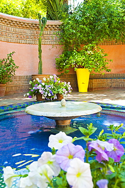 Fountain and flowers in the Majorelle Gardens (Gardens of Yves Saint-Laurent), Marrakech, Morocco, North Africa, Africa