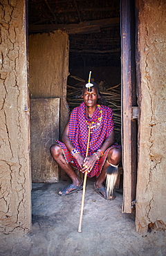 Portrait of a single Masai Mara man wearing traditional jewelry, headpiece and clothes, Masai Mara National Reserve, Kenya, East Africa, Africa
