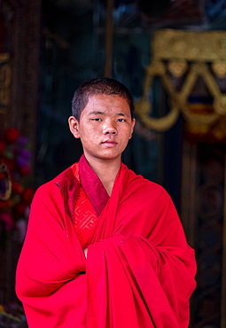 Portrait of a young Buddhist monk, Punakha Dzong, Bhutan, Asia