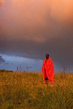 A Masai Mara man wearing traditional tribal red blanket, Masai Mara National Park, Kenya, East Africa, Africa