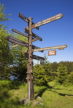 Signpost at Oderteich, Harz, Lower-Saxony, Germany, Europe