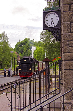 Alexisbad Station, Harz, Saxony-Anhalt, Germany, Europe