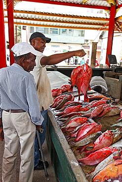Victoria Fish Market, Mahe Island Seychelles, Indian Ocean