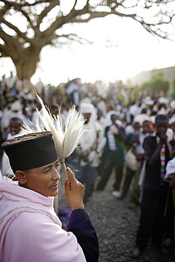 Group of believers around a meeting tree, priest with horsehair frond in foreground, Axum, Tigray Region, Ethiopia