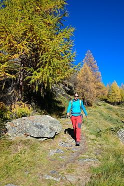Woman hiking above Lake Sils, Engadin, Grisons, Switzerland