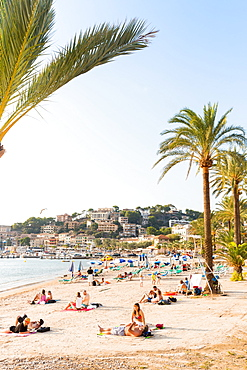 Beach with palm trees, Mediterranean Sea, Port de Soller, Serra de Tramuntana, Majorca, Balearic Islands, Spain, Europe