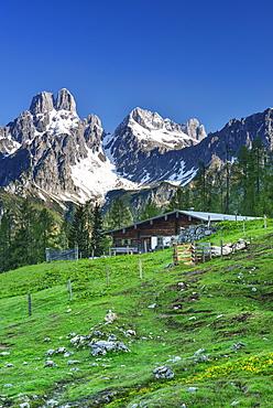 Alpine hut with mount Bischofsmuetze in background, Sulzenalm, Dachstein Mountains, Salzburg, Austria