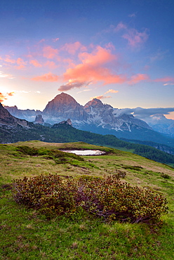 Passo Giau, Monte Cristallo, Formin, Meadow, Dolomites, Alps, Italy, Europe