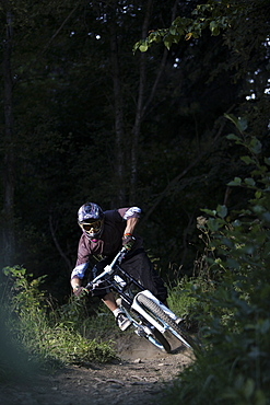 Mountain biker riding over forest track, Oberammergau, Bavaria, Germany